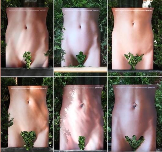 julyna-ambient-végétation-2