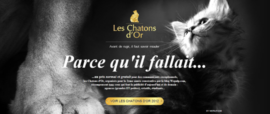 Les-Chatons-dOr-2013